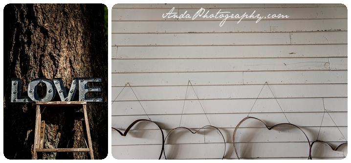 Bellingham Wedding Photography Backyard Wedding Lifestyle Photography Unrein Bison_0065
