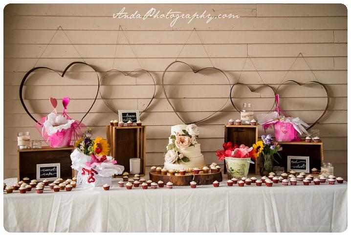 Bellingham Wedding Photography Backyard Wedding Lifestyle Photography Unrein Bison_0076