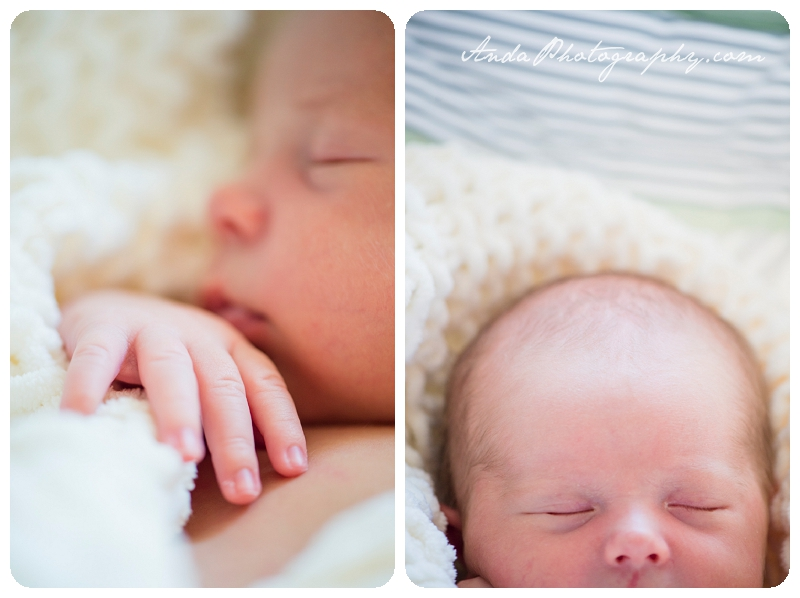 Bellingham Family Photos Newborn Photos Home Family Photography Lifestyle Newborn Photography_0013