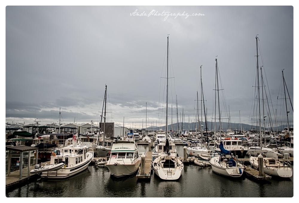 Anda Photography Bellingham wedding photographer Bellingham Yacht Club Wedding lifestyle wedding photographer Seattle Wedding Photographer_0038