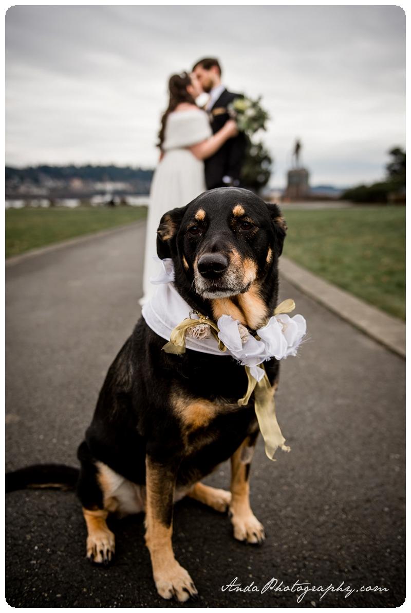 Bellingham Wedding Photographer Seattle wedding photography Squalicum Boathouse wedding Anda Photography_0023