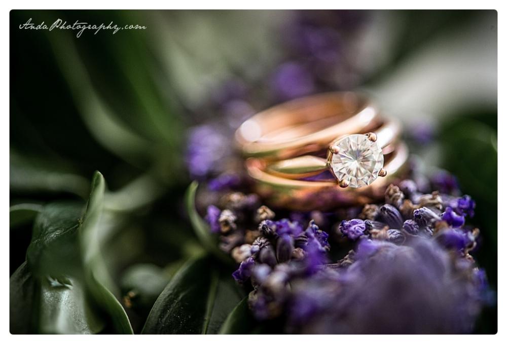 Anda Photography, Bellingham wedding photographer, Skagit wedding photographer, Stepping Stones Garden, Whatcom County wedding photographer_0000f