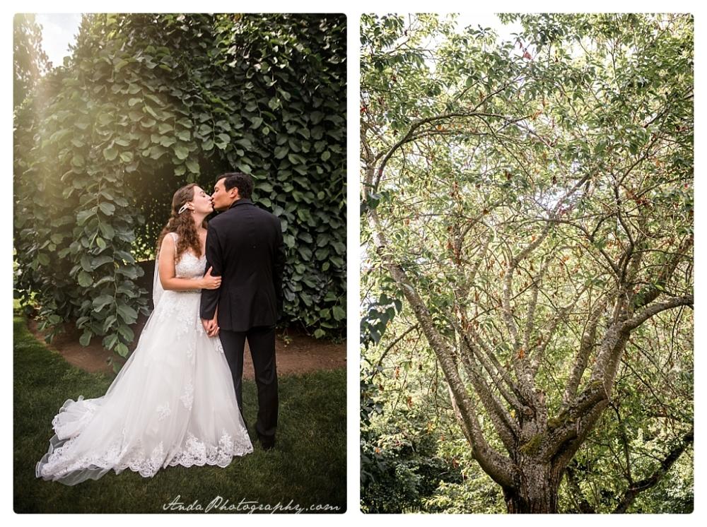 Anda Photography, Bellingham wedding photographer, Skagit wedding photographer, Stepping Stones Garden, Whatcom County wedding photographer_0025b